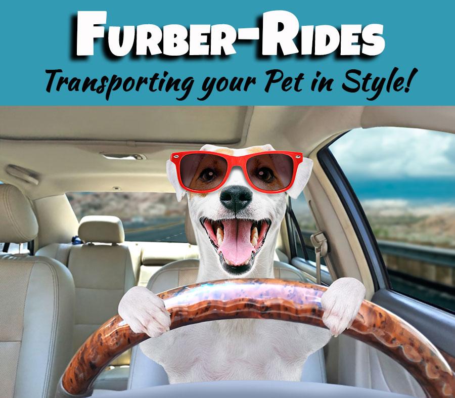 Furber Rides Pet Taxi Critter Sitters
